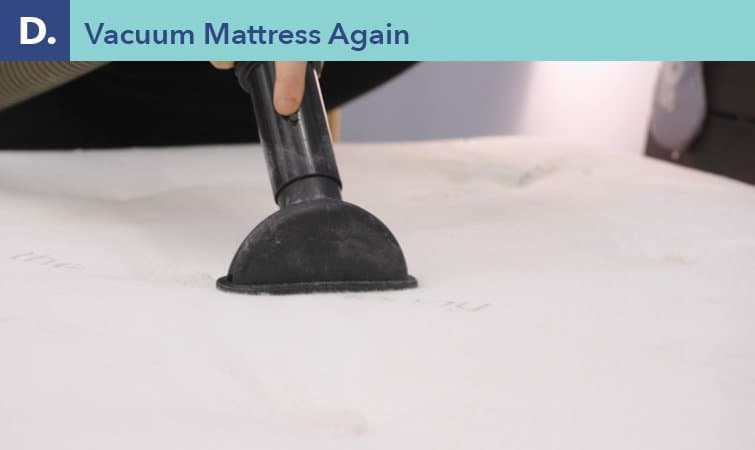 How to clean a mattress-step four