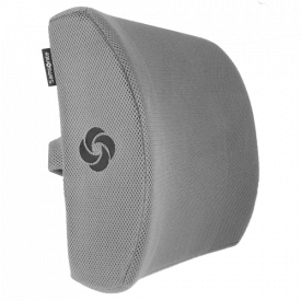 Samsonite Ergonomic Lumbar Support Pillow