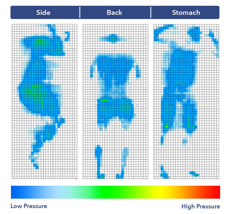 Apollo Mattress Pressure Map