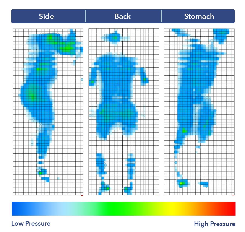 Brentwood Hybrid Latex Pressure Map