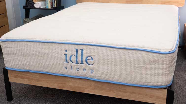 Idle Sleep Latex Motion Transfer