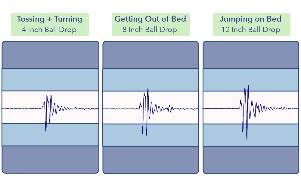 Rest Bed Purple Grid Motion Transfer
