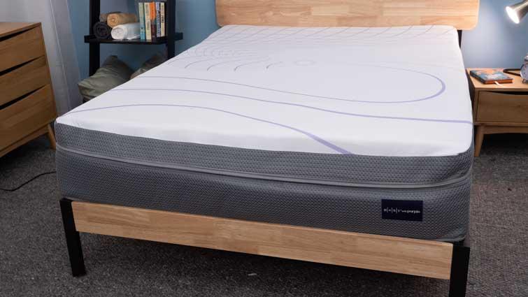 Rest Bed Purple Grid