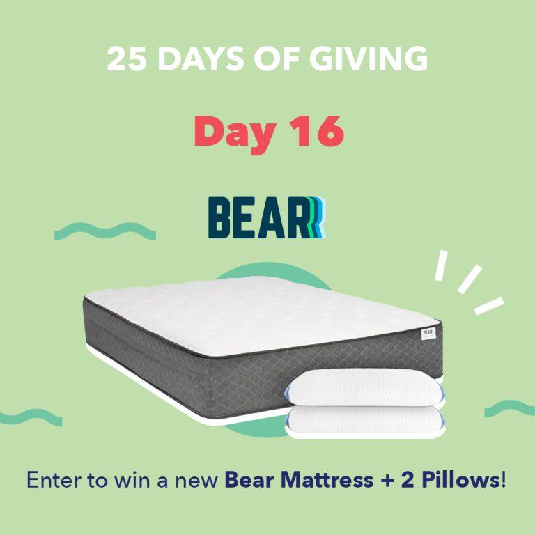 Bear Day16 25DaysOfGiving