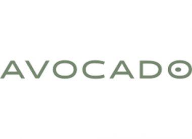 Avocado Latex