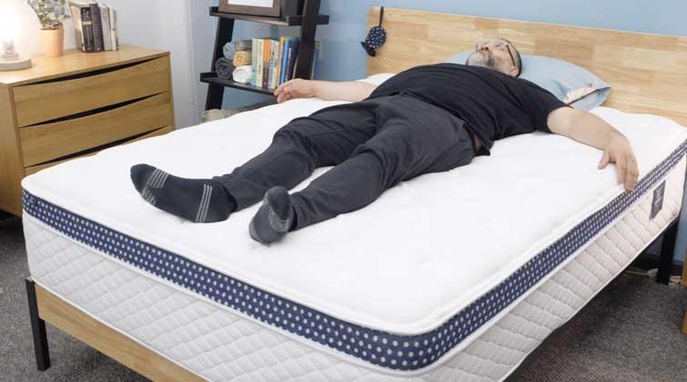 winkbed plus back sleeper