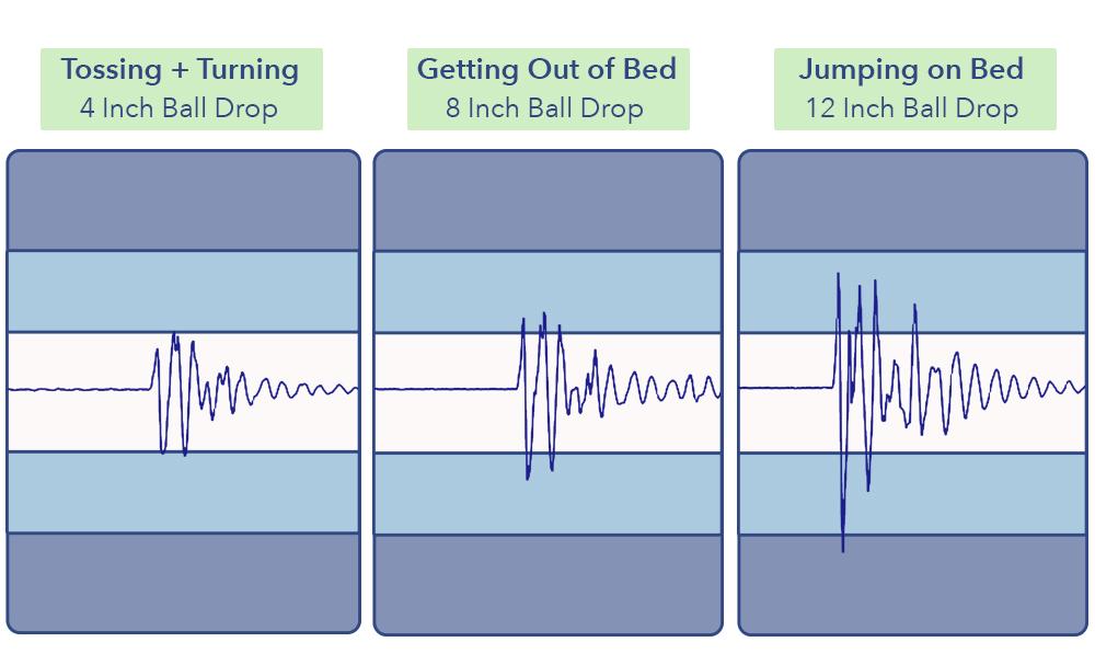 The Bliss's motion transfer scores.