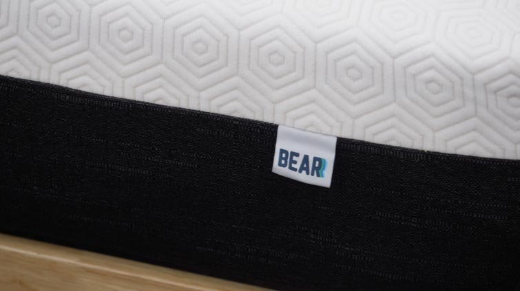 Bear Pro cover close up